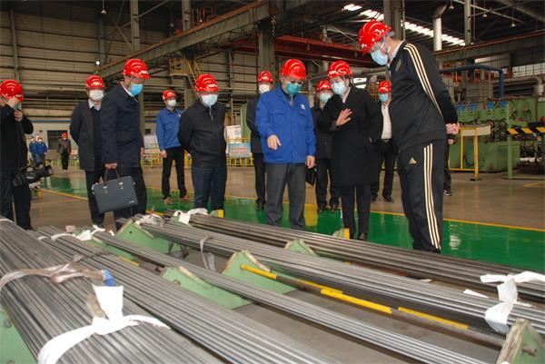 河北省市场监督管理局党组书记丁锦霞到河冶科技调研